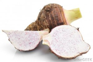 raw-taro-root