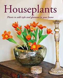 Houseplants by Clare Matthews