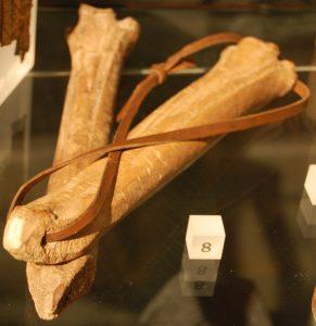 bone-skates